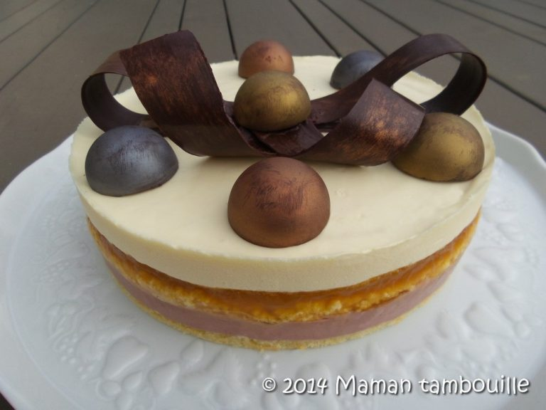 Read more about the article Entremet passion framboise
