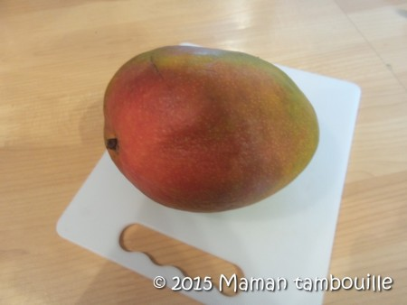 dome-mangue01