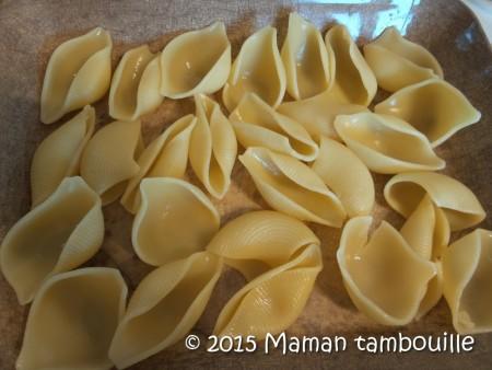 conchiglies-legumes-soleil10