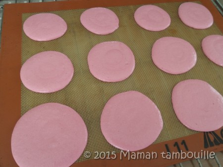 macaron-framboise-mures02