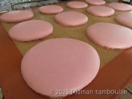 macaron-framboise-mures03
