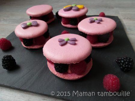 macaron-framboise-mures22
