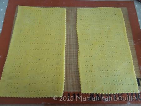 tarte-parmesane-poivrons09