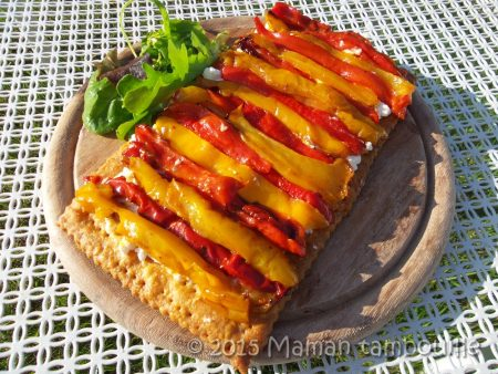 tarte-parmesane-poivrons13