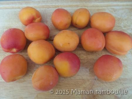 compotee-abricot-romarin01
