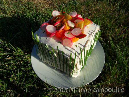 sandwich-cake25