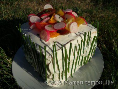 sandwich-cake27