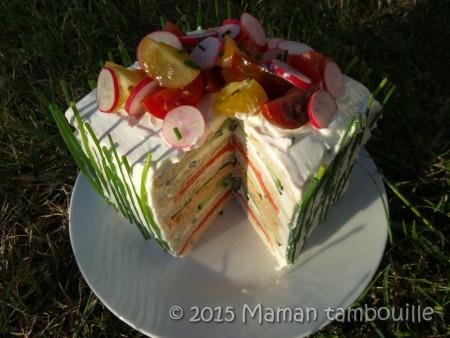 sandwich-cake35