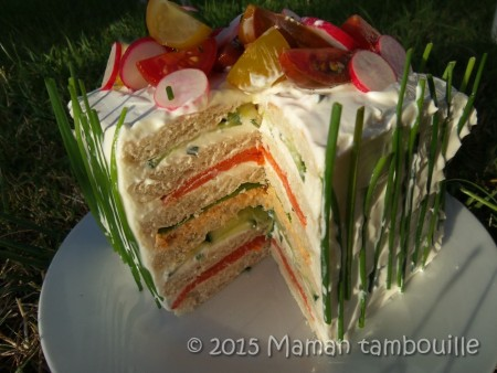 sandwich-cake37