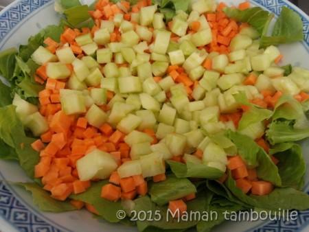 salade-asiatique-au-poulet02