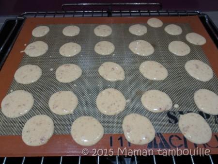 biscuits-apero-bolo04