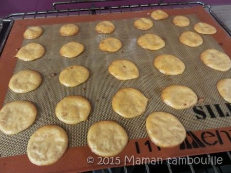 biscuits-apero-bolo05