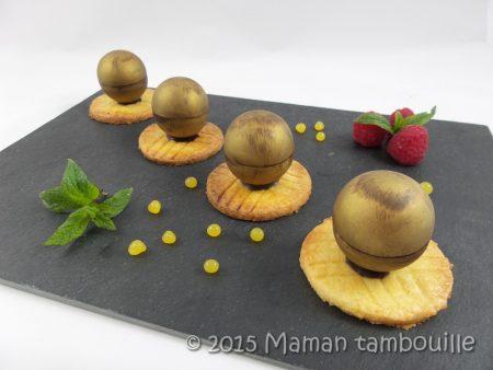 mini spheres cremeux vanille framboise18