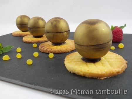 mini spheres cremeux vanille framboise21