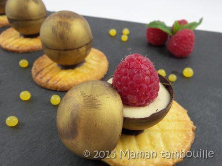 mini spheres cremeux vanille framboise25