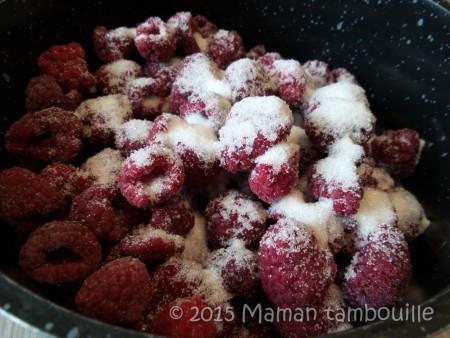 buche mangue insert framboise02