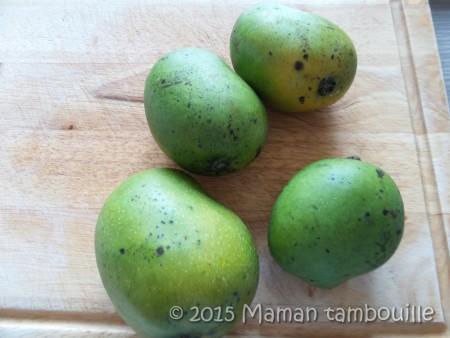 buche mangue insert framboise11