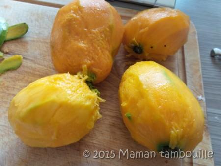 buche mangue insert framboise18