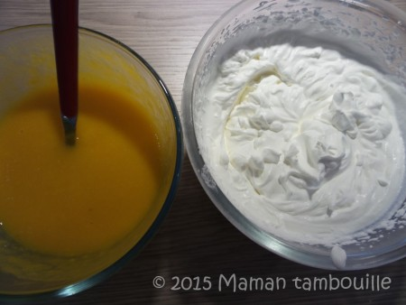 buche mangue insert framboise26