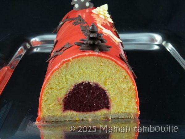 Bûche mousse de mangue insert framboise