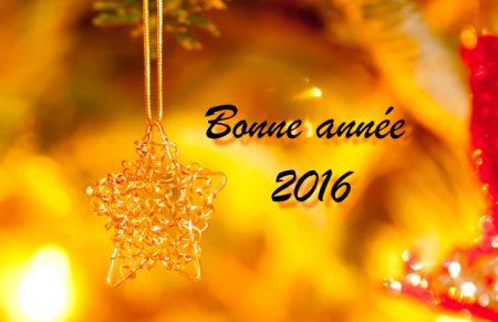 bonne annee2016