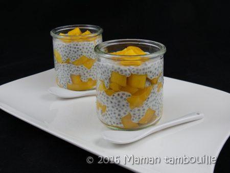 creme-coco-mangue-chia16