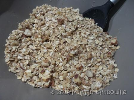 granola muesli03