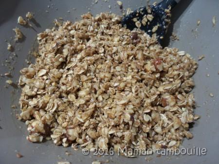 granola muesli06