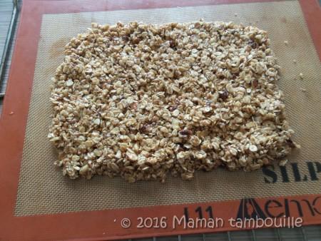 granola muesli07