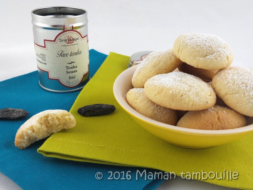 Read more about the article Crousti-moelleux à la fève tonka