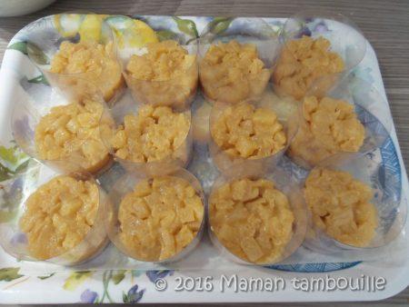 entremet-ananas-tonka14