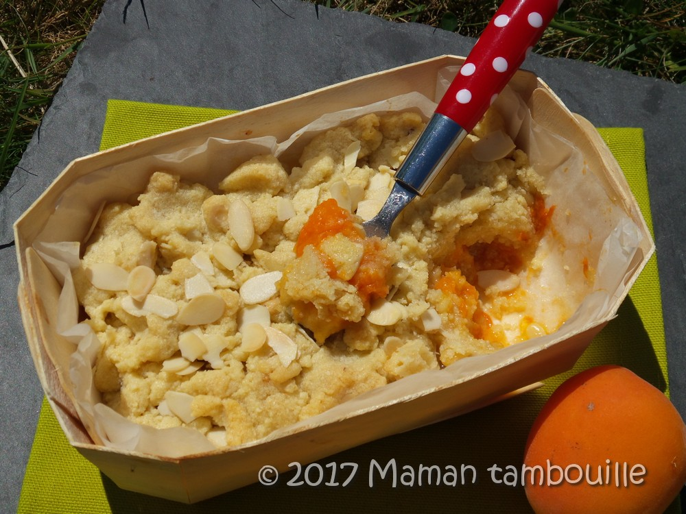Read more about the article Crumble aux abricots