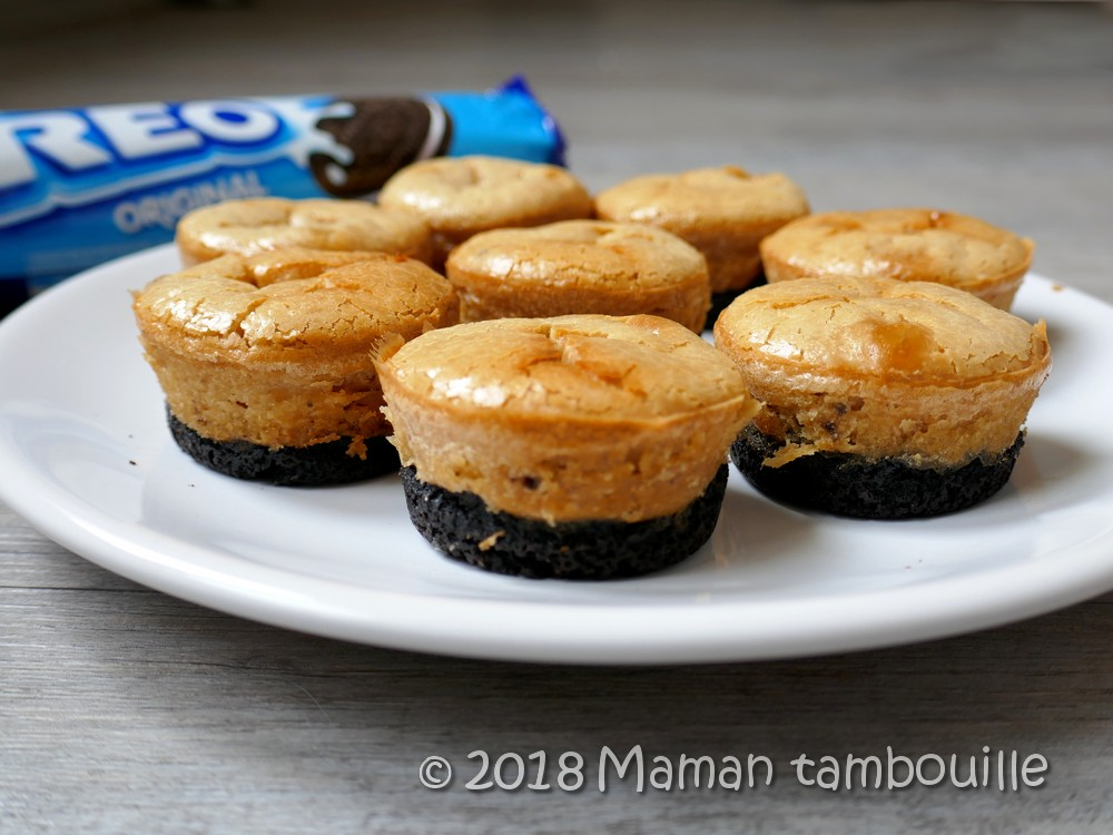 Read more about the article Cheesecake oreo cacahuètes