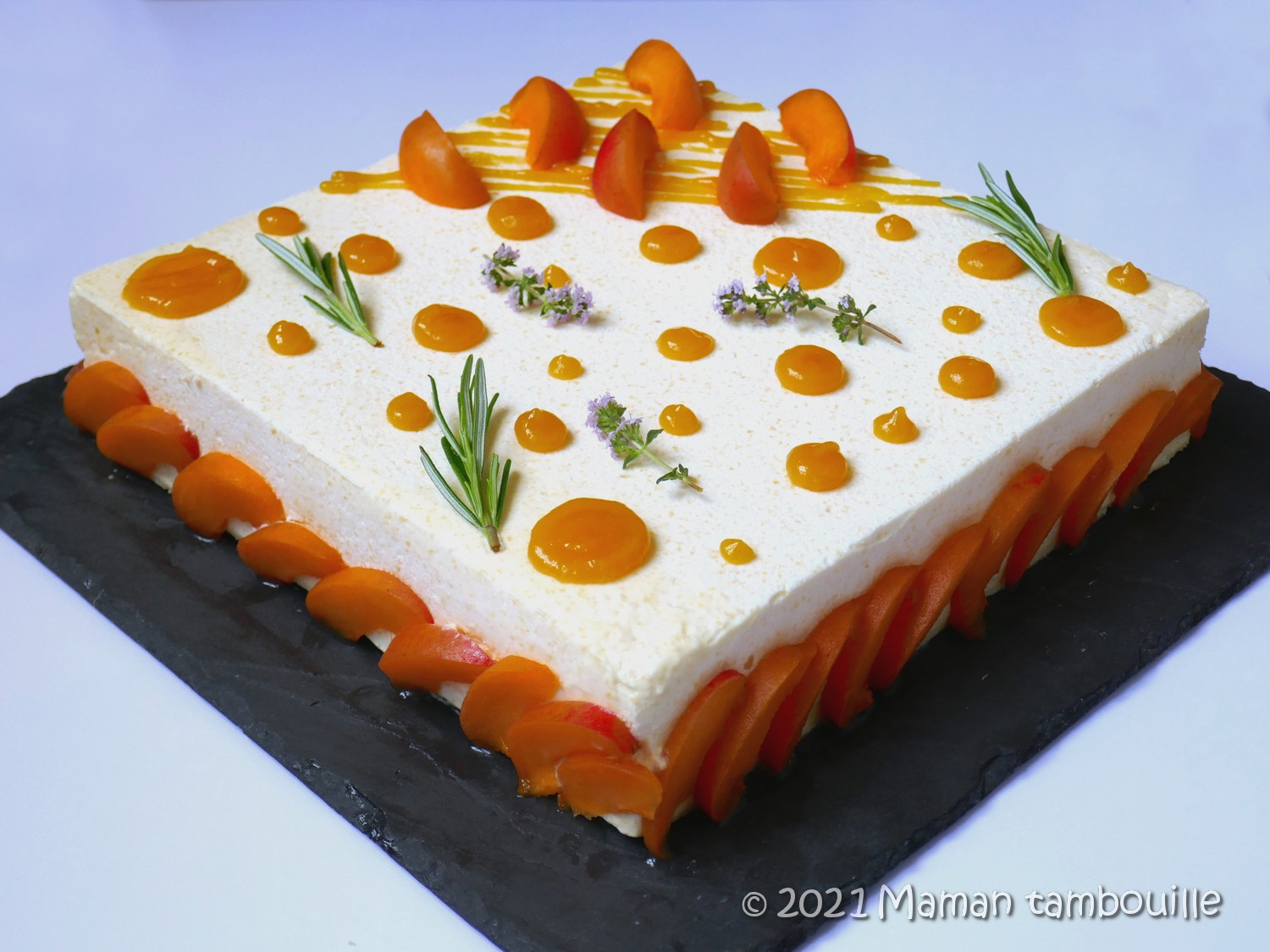 Read more about the article Entremets abricot chataigne