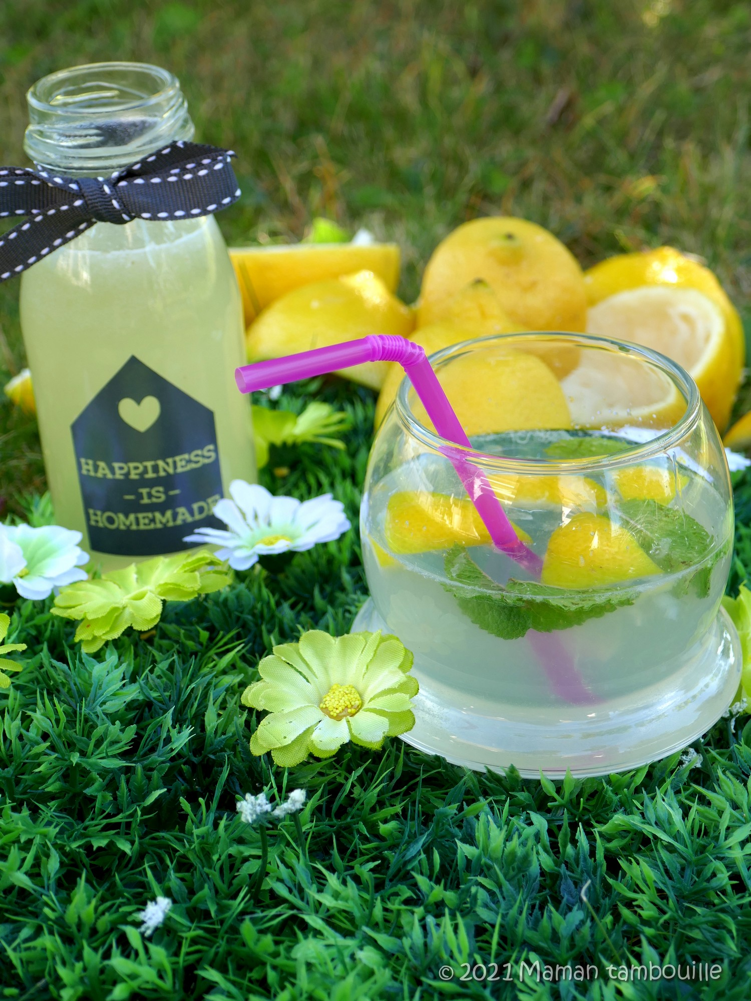 Read more about the article Sirop de citron